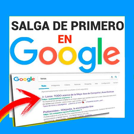 Salga en Google de primero